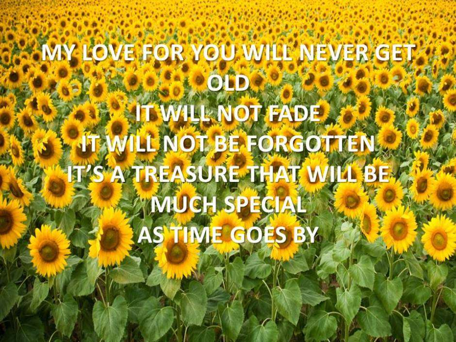my-love-for-you-will-never-get-old-1538299533_1573453910.jpg
