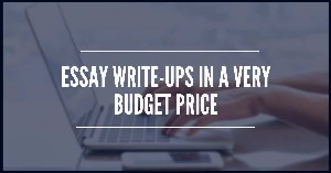 Essay write-ups in a very budget price.jpg