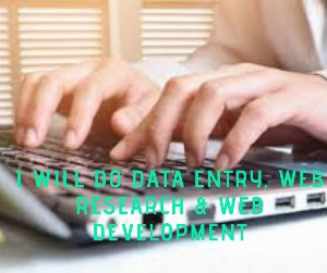 I will do Data entry, web research & Web Development_1574324822.png