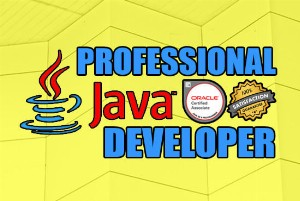 create-java-program-that-will-satisfy-your-requirement_1577973243.png
